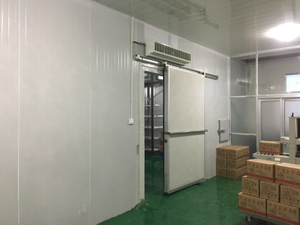 Cold Room Or Storage Or Chiller Room for All Kinds of Frozen Or Fresh Food Storage